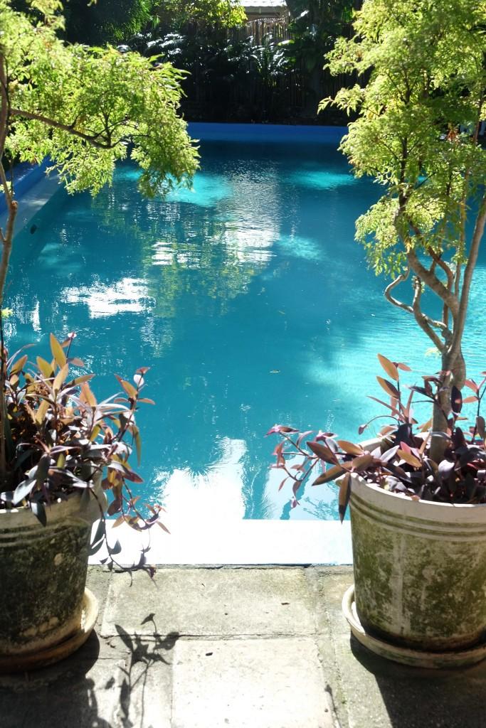 Hemingway House, Hemingway Home, Key West, Hemingway Haus, Lifestyle Blog Lieblingsstil, Lifestyleblog Lieblingsstil, Hemingway pool, Hemingway Schwimmbad